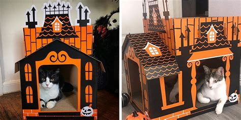 haunted house   cat  target