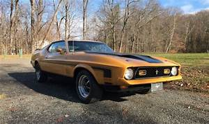 1971 Ford Mustang Fastback MACH 1 for sale in Lafayette, Louisiana, United States