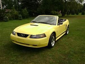 cwynarmustang 2002 Ford Mustang Specs, Photos, Modification Info at CarDomain
