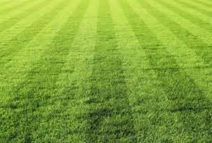 poster noir et blanc poster sur la pelouse du terrain de aux bandes de