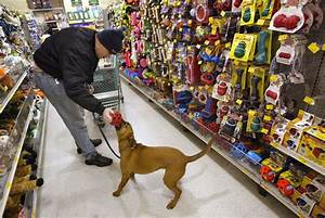 petsmart to acquire online pet store chewy