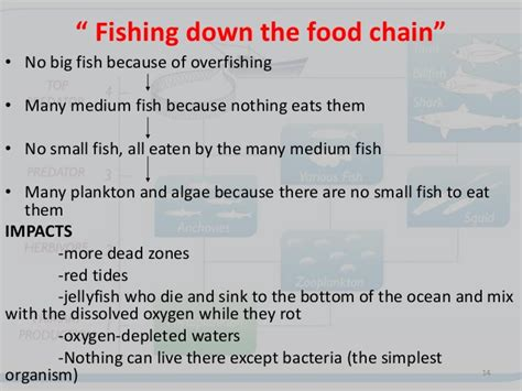 objectives  fisheries management