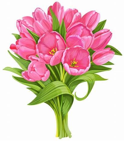 Bouquet Transparent Clip Tulips Clipart Flowers Yopriceville