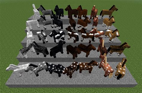 minecraft horse types horses different chart breeding mods cheval cavalos gamepedia wiki chevaux couleurs cores xbox craft