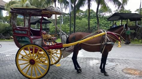 philippine kalesa kalesa spanish colonial transportation from the