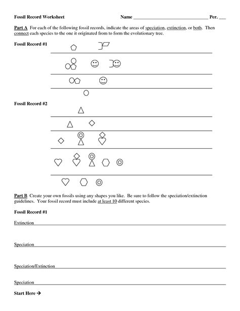 newest the fossil record worksheet goodsnyc