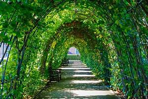 Parks In London : 5 hyde park highlights radisson blu ~ Yasmunasinghe.com Haus und Dekorationen