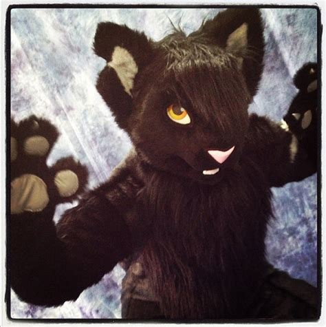 Black Cat Fursuit Tumblr