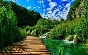 Wooden, Pontoon, Bridge, Nature, Landscape, Hd, Wallpapers