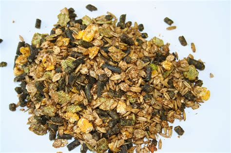 High Quality, Protein Rich Microbial Feed