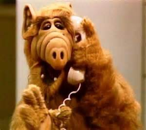 Alf Tv series | remember the old days ...