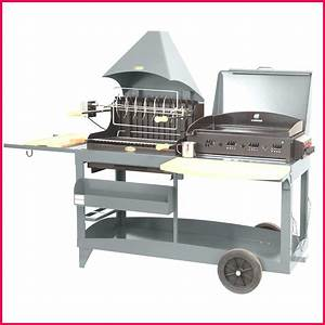 Barbecue A Gaz Castorama : grille barbecue castorama ides ~ Melissatoandfro.com Idées de Décoration