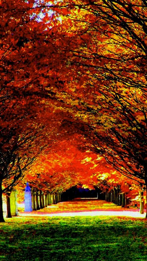 Autumn Season Wallpapers For Phone by 17 Best Images About Season Wallpaper On