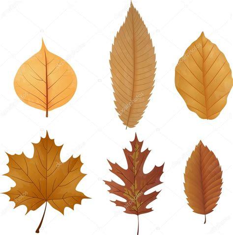 Como folha seca ao sabor dos ventos eu caminhei senhor / senti muita sede eu estou g5+ c gm7 c7 f fm eu sou. Baxa Folha Seca / Luminária Mesa Folha Seca E-27 40 W : A ...