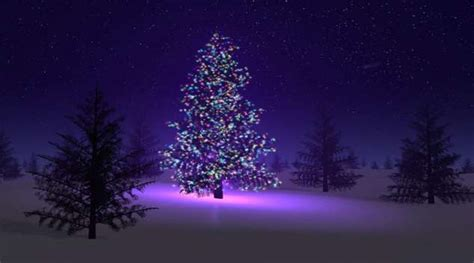 christmas tree lights at night pictures reference