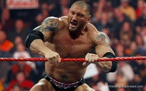 batista wrestling raw smack  ecw wwe divas