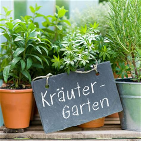 kräutergarten anlegen winterhart kr 228 uterspirale anleitung zum bauen und bepflanzen
