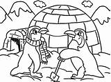 Igloo Penguin Coloring Pages Outline Drawing Lesson Printable Winter Penguins Sheets Template Drawings Getdrawings Bulkcolor sketch template