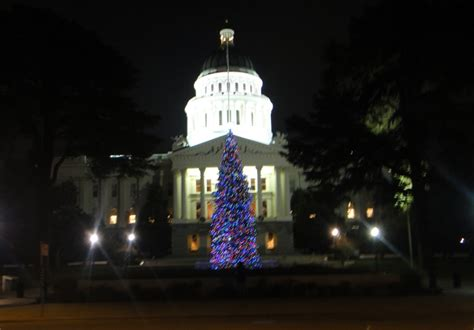 christmas tree lots in sacramento carmichael area in the capitol also harvest festival dudes nanny goats in nanny goats