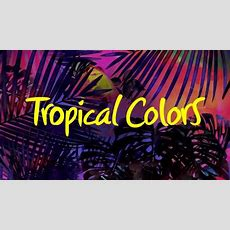 Desfile De Prélançamento Make B Tropical Colors  Youtube