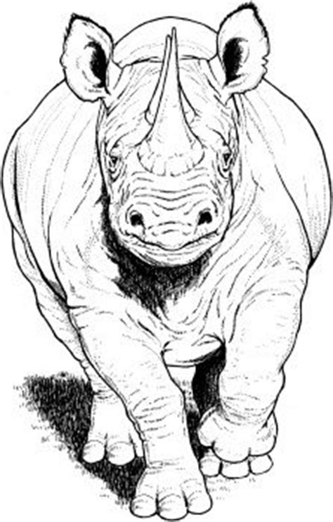 black rhino running coloring page super coloring