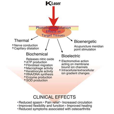 biostimulation laser