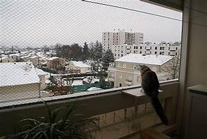 Sonnenschirmhalterung Balkon Obi : protection pour chat balcon terrasse br stungsh he fenster k che ~ Yasmunasinghe.com Haus und Dekorationen