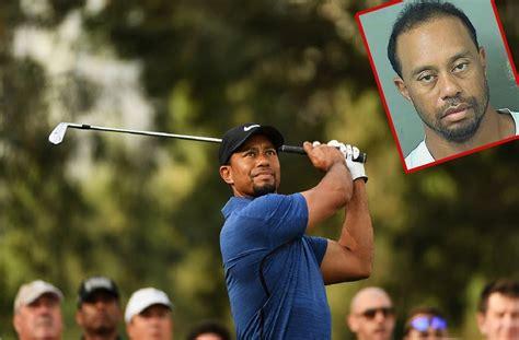 Tiger Woods DUI Confession: Golfer Seeking 'Professional' Help