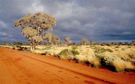 Climate trends in Western Australia   Agriculture and Food