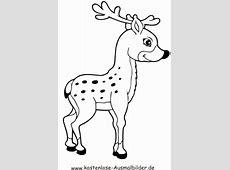 Ausmalbilder Hirsch Tiere zum ausmalen Malvorlagen Hirsche