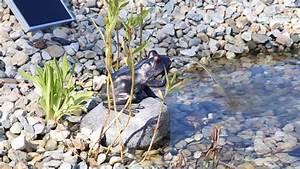 Springbrunnen Für Teich : clgarden solar wasserspeier nsp10 wasserspiel springbrunnen f r teich youtube ~ Eleganceandgraceweddings.com Haus und Dekorationen