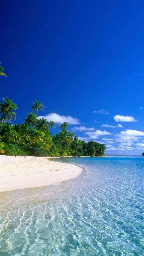 Enjoy and share your favorite beautiful hd wallpapers and background images. 43+ Tropical Beach Phone Wallpaper on WallpaperSafari