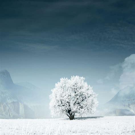 Winter Wallpaper For Ipad Wallpapersafari