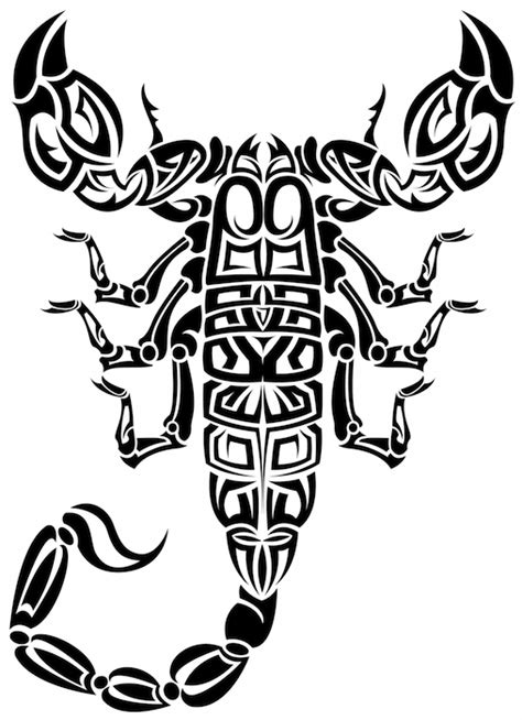 scorpion tattoo meaning tattoos  meaning