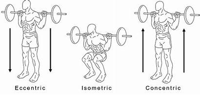 Muscle Squat Actions Example Exercise Isometric Types