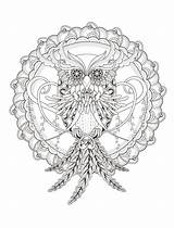 Coloring Adults Owl Detailed sketch template