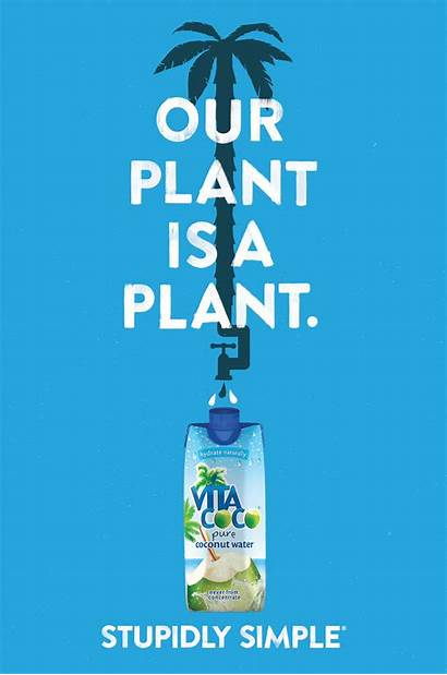 Water Ad Campaign Simple Coconut Coco Advertising