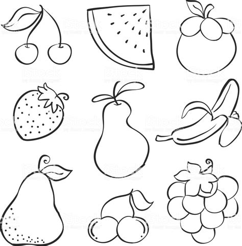 hand draw fruit  style doodles vector illustration