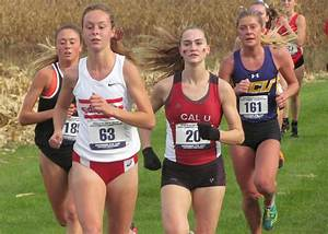 Women's Cross Country Ranks 25th in USTFCCCA National ...