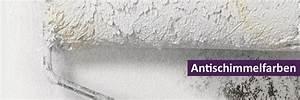 Anti Schimmel Farbe Bauhaus : kalkfarbe gegen schimmel affordable kalkfarbe gegen schimmel with kalkfarbe gegen schimmel ~ Frokenaadalensverden.com Haus und Dekorationen