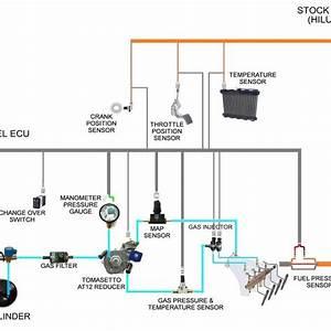 Fast Ez Efi 1 0 Wiring Diagram