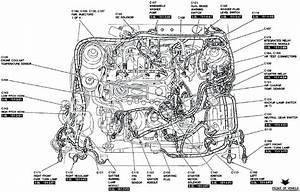 Wiring Diagram Ford 302 Firing