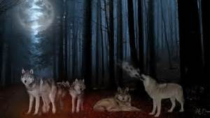 Wolf Pack Full Moon - Dogs & Animals Background Wallpapers ...
