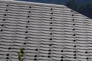 Eternit Dach Reinigen Streichen : eternit am dach auswechseln so gelingt 39 s ~ Lizthompson.info Haus und Dekorationen