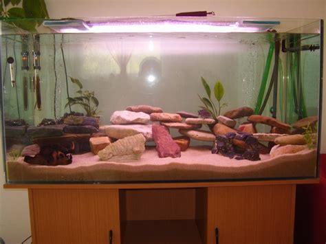 sol nutritif aquarium images