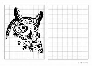 Owl Grid Drawings By Scrowther99 - Uk Teaching Resources