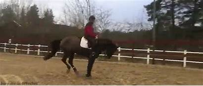 Horse Riding Rodeo Riders Cheval Worst Animated