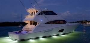Discover The BERTRAM Miami International Yacht Sales