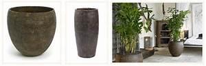 Grand Pot De Fleur Interieur : pot fleur interieur l 39 atelier des fleurs ~ Premium-room.com Idées de Décoration