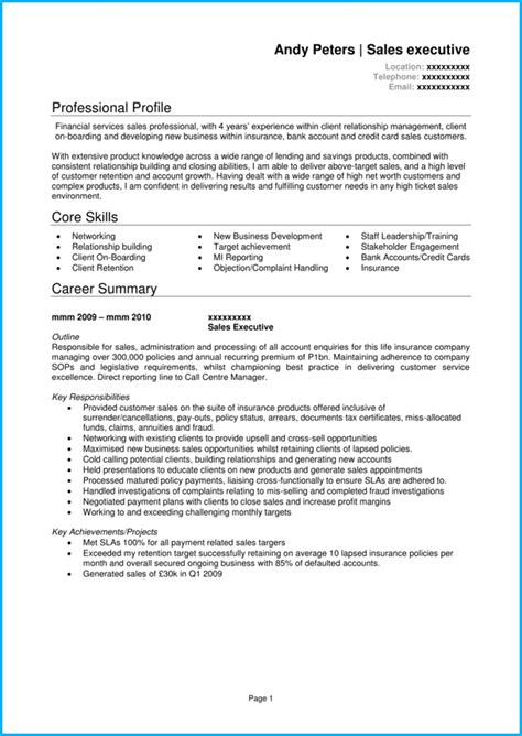 How To Write A Professional Cv Sles by Docs Cv Template With 8 Cv Exles For Inspiration